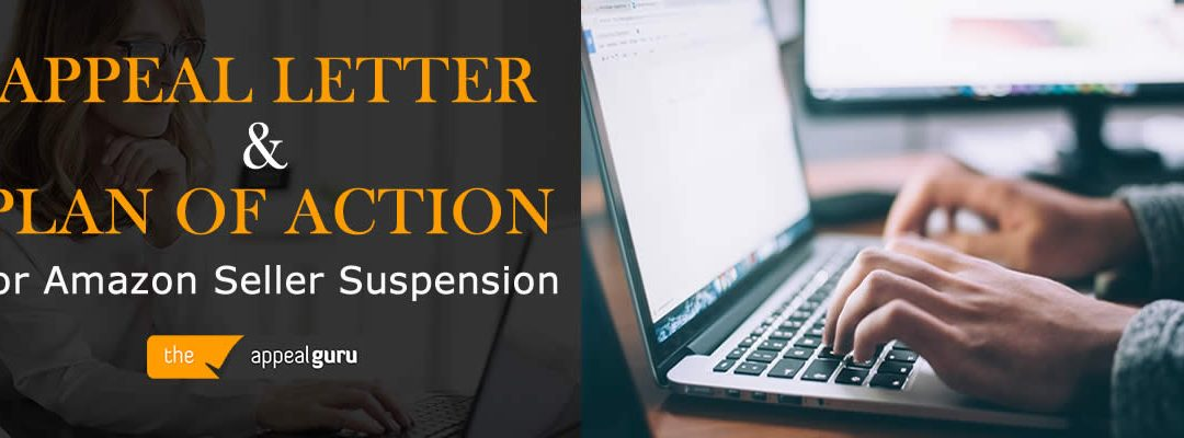 Custom Appeal Letter and Plan of Action for Amazon Seller Suspension